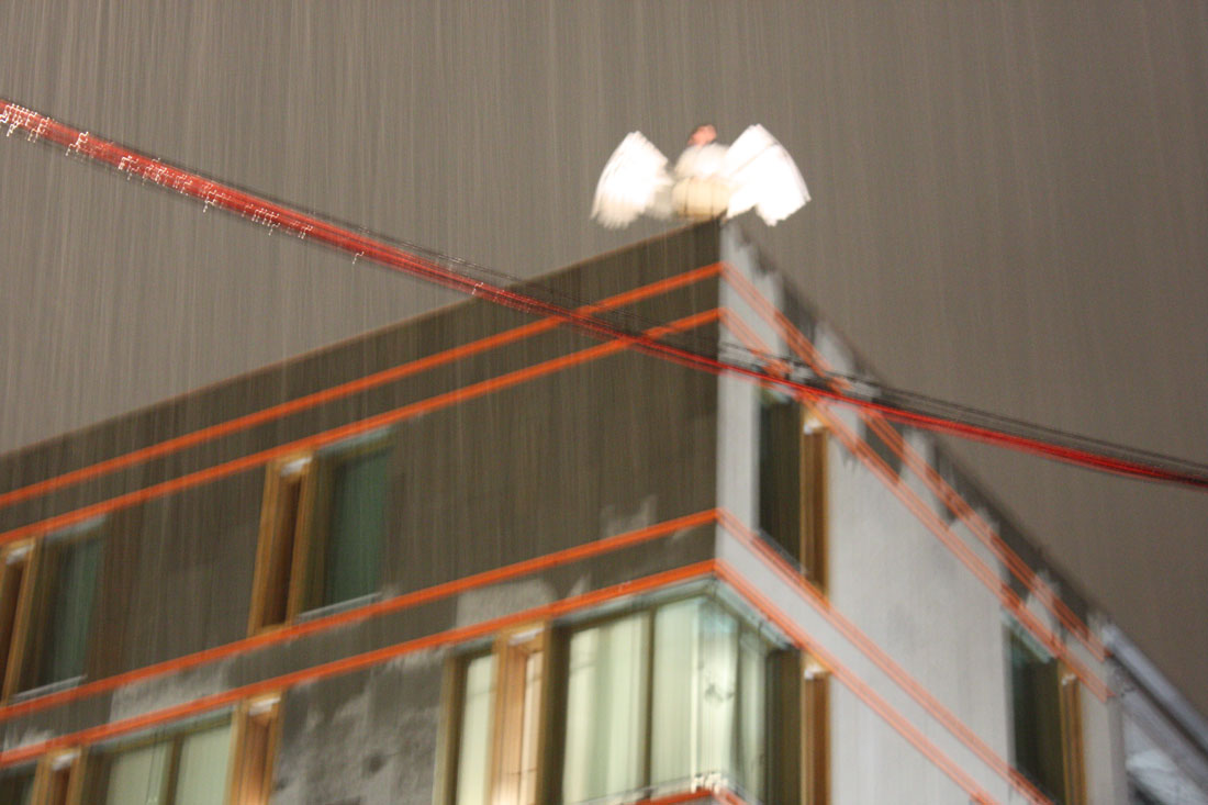 angele 2009